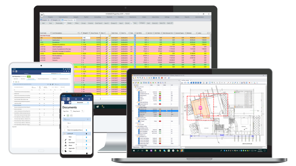 danaos projectview costo control and projects performance management software all-in-one frames